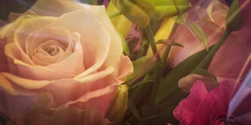 legomand-blomster-janniegejl