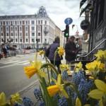 Foråret spirer også i KBH